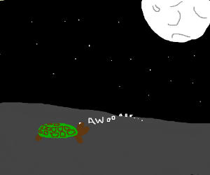 Turtle howls at the moon.