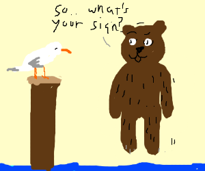 The floating bear been chatting up the seagull