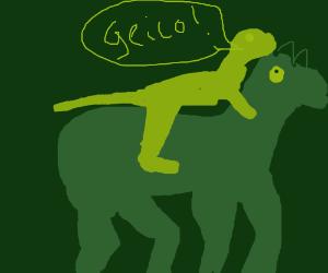 Car insurance Gecko rides a horse.