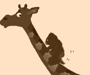 Gorilla gets inappropriate with a giraffe