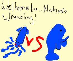 Nature's Wrestling Match Giant Squid v. Whale