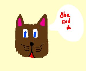 my cat is a tattle tale