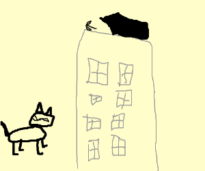 Cat ponders mysterious arrow on building