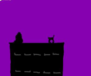 cat is suspicious of shadow atop building