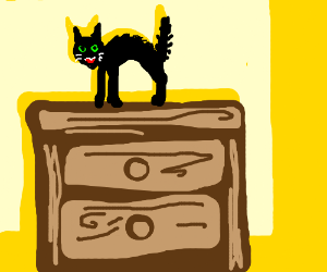 scared cat on dresser
