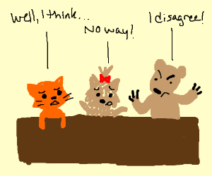 a bear, a yorkshire, and a cat have a debate