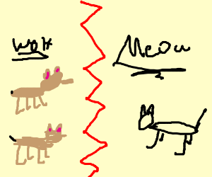 All the dogs are barking apart from the cat