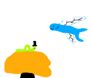 caterpillar in a hat meets a flying fish