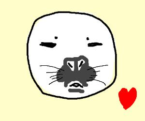 Cute seal blows a kiss at the beach