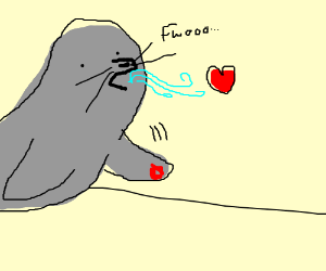 a seal blowing out its love, monopopy