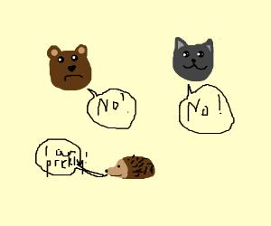 Bear, cat & hedgehog have a disagreement