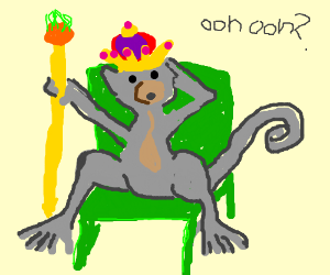 Confused king monkey