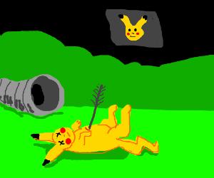 The Hunger Games VS Pokemon