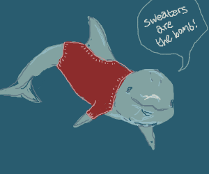 Dolphin likes hand knitted sweaters