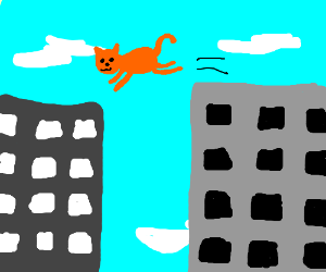 Daring cat leaps from 1 skyscraper to another