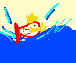 Magicarp used splash