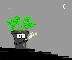 Pot with pot smoking pot