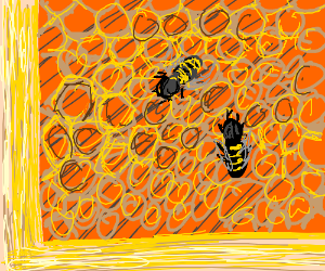 Golden bee hive