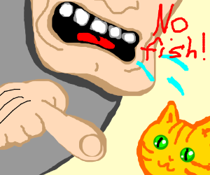 angry guy says no fish for happy kitty