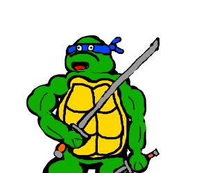 Ninja turtle's mind has been blown
