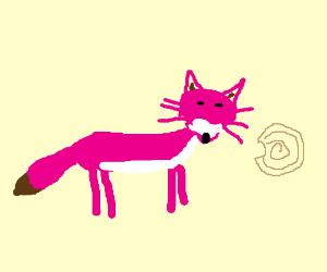 Pink fox eating cinabon