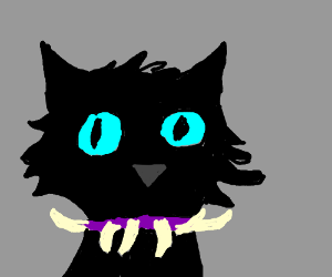 Scourge From Warriors