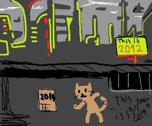 Cat hides behind 2014