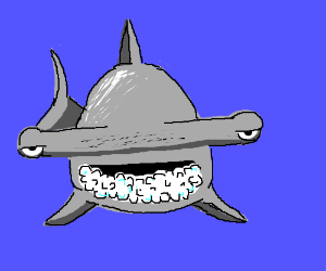 Sleep deprived hammerhead foaming from mouth