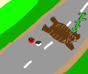 Bear sleeps on the road - just like in Pokemon