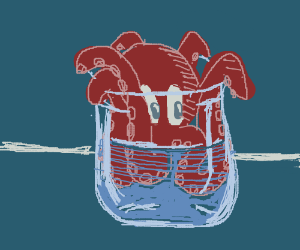 Octopus in a glass cup