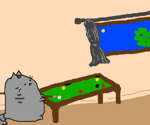 Did u know ur cat plays pool while you're out?