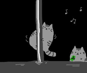 A cat poledancing