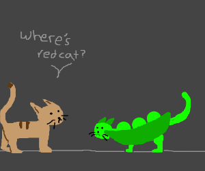 A Cat asks a Peacat about a Red Cat.