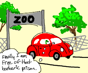 Snakes escape from the zoo in a car.