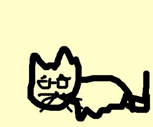 Granny Cat