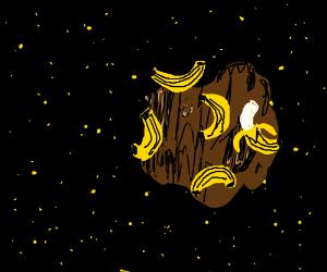 Bananas on an asteroid