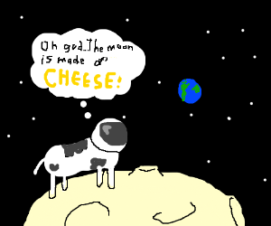 Space cow discovers the secrets of the moon.