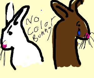RACISM TO BUNNIES