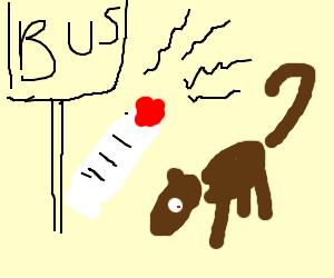 Dog on schoolbus riding pogo stick