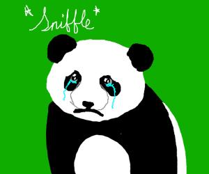 That makes me a sad panda!