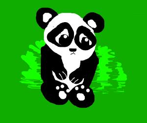 You did The panda SAD!