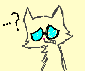 Blind cat dosn't know the answer