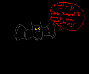 Bat complains about darkness