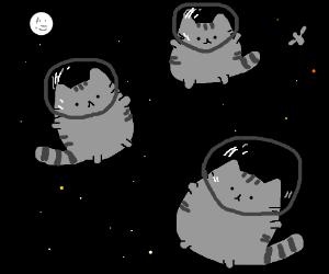Astrokitties