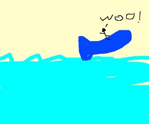 A man riding a whale