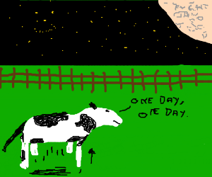 A cow failed jumping to moon