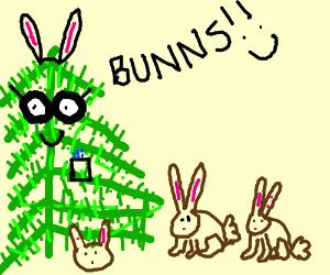 A nerd fir likes bunns