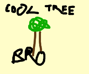 Cool Tree, Bro