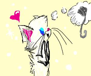 Snowy Cat dreams of ball of wool