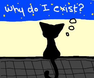 A cat suspicious of the meaning of life
